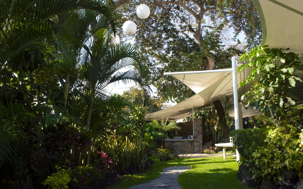 jadín-jacarandas-bodas-íntimas-cuernavaca